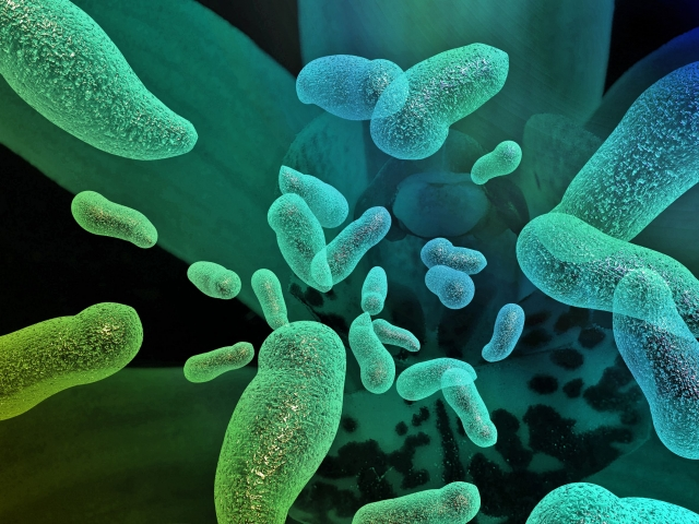 6 Bacteria with Awesome Superpowers